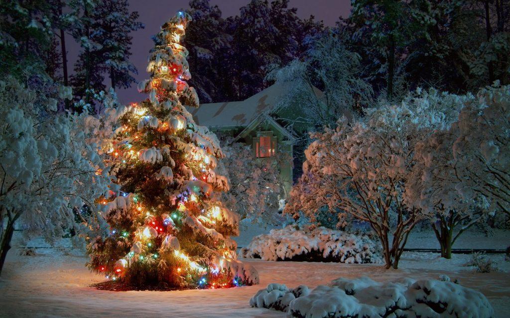 елка на улице