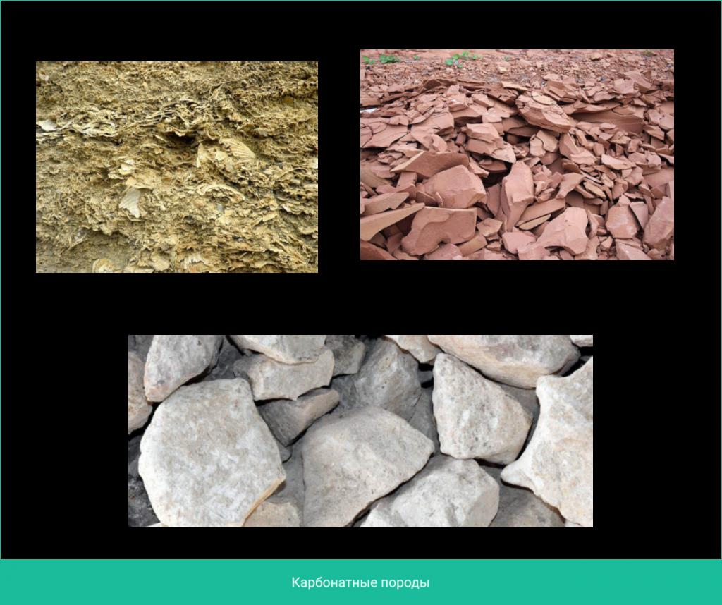 карбонатные породы